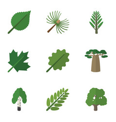 Flat icon nature set of jungle oaken linden and vector