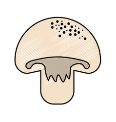 Delicious fresh mushroom organ food vector