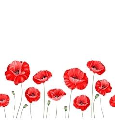Pattern of poppy flowers vector image