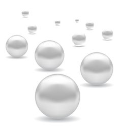 Set of white pearl vector