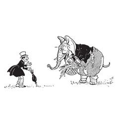 animal alphabet e elephant vintage vector image