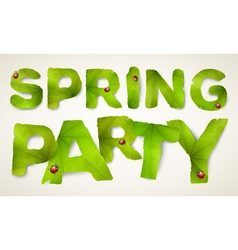 Spring party words made from green leaves vector
