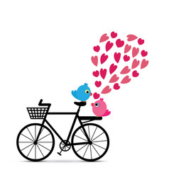 love birds with bicycle vector image