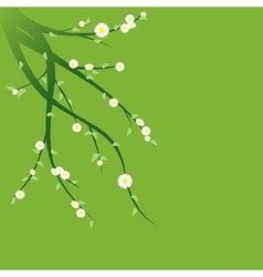 Flowering Green Branches vector image