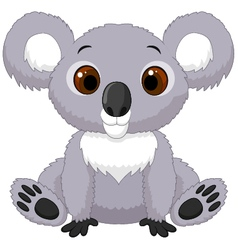 Cartoon koala vector
