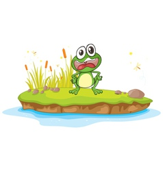 a frog and a water vector image vector image