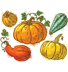 Cute colourful pumkins set vector