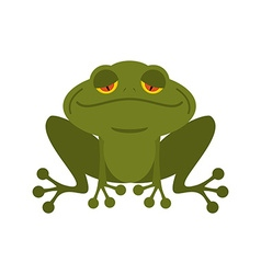 Frog green melancholy toad cute freshwater with vector