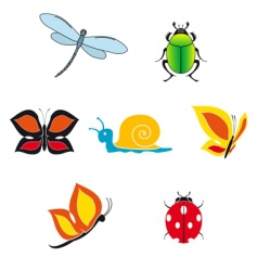 Set of insect icons vector
