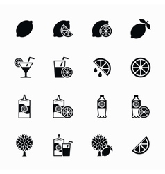 Lemon and lime icons set Lemonade juice vector image