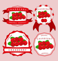 the theme cranberry vector image vector image