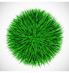 Background with circle of grass vector