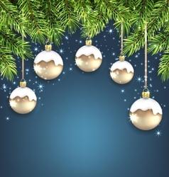 Christmas Background with Fir Twigs and Glass vector image