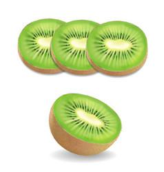 kiwi fruit realistic on white background vector image