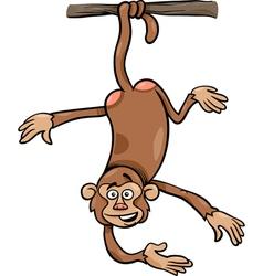 monkey on branch cartoon vector image vector image