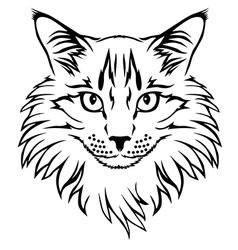 contour cat vector image