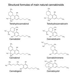 Chemical formulas of natural cannabinoids vector