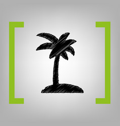 coconut palm tree sign black scribble vector image vector image