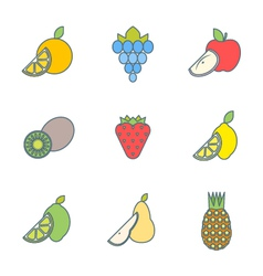 Colored outline various fruits icons vector
