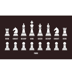 Complete set of chess pieces vector