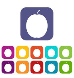 Fresh apricot icons set vector