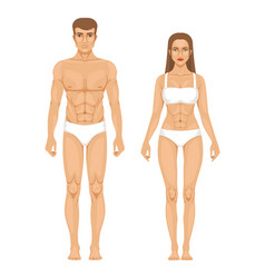 model of sporty man and woman standing front view vector image