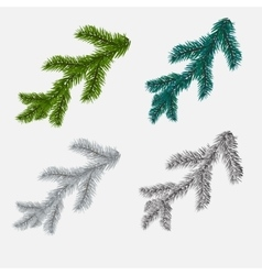 Set of fir pine branches isolated on white vector