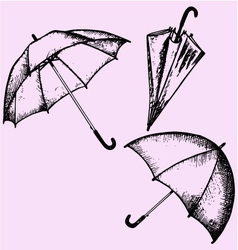 umbrella vector image vector image