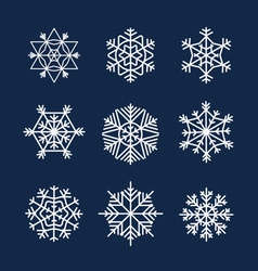 Flakes vector
