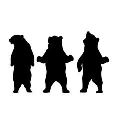 bear silhouette animal vector image vector image