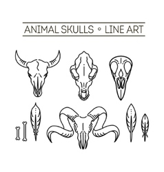 Outline icon skull animals vector