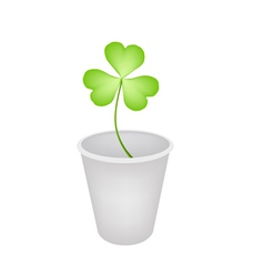 Four leaf clover in a flower pot vector