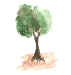 Airy watercolor tree with green foliage which vector image vector image