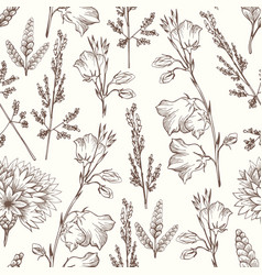 delicate seamless pattern with wildflowers hand vector image vector image