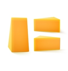 Set of triangular pieces cheddar cheese vector