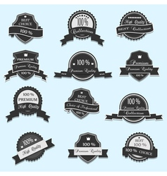 Set of 12 premium quality labels vector