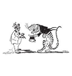 animal alphabet t tiger vintage vector image vector image