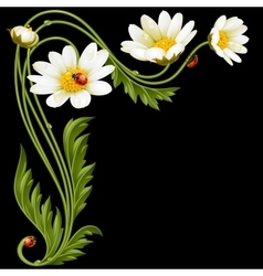 corner pattern with daisies and ladybug vector image vector image