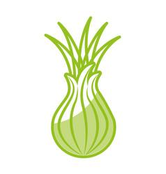 custard apple fresh vegetable icon vector image