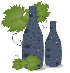 grape00 vector image