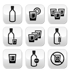 Vodka strong alcohol buttons set vector image