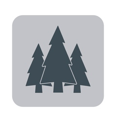Flat icon fir trees vector