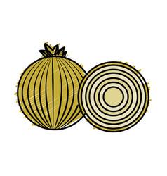 Fresh onion with slice organ vegetable food vector