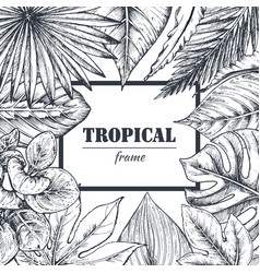 Template with frame of hand drawn tropical vector
