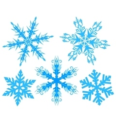 Set Snowflake Flake of snow vector image