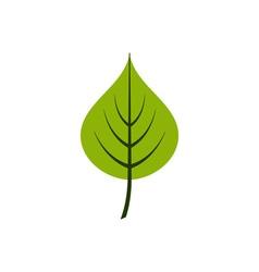 Linden-leaf-380x400 vector