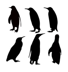 penguien silhouette set vector image