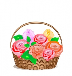 rose basket vector image vector image