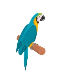Pretty blue parrot ara on branch bird isolated on vector