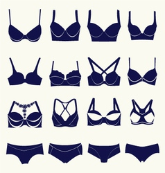 Bra icon set different types of bras and pants vector